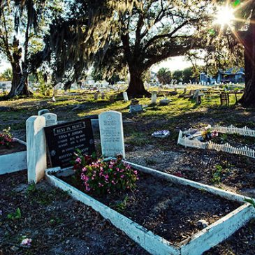 Pictures of Holt Cemetery in New Orleans