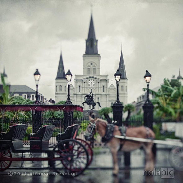 Prints of  St Louis Cathedral new Orleans