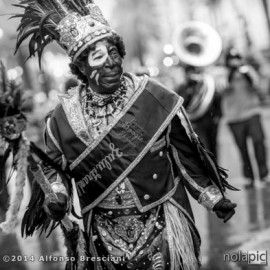 2014 Krewe of Zulu Pictures !